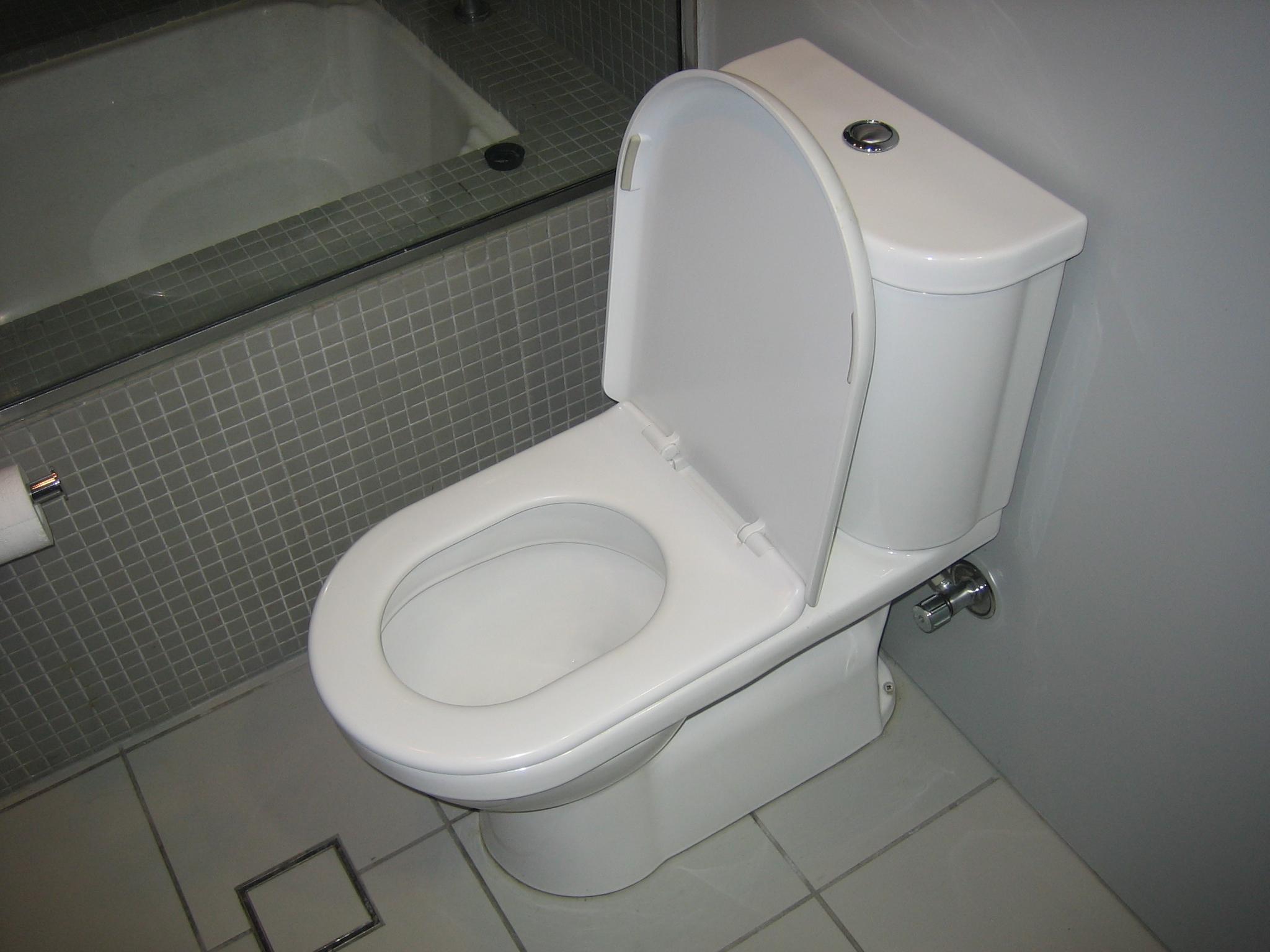 Flush Ilet